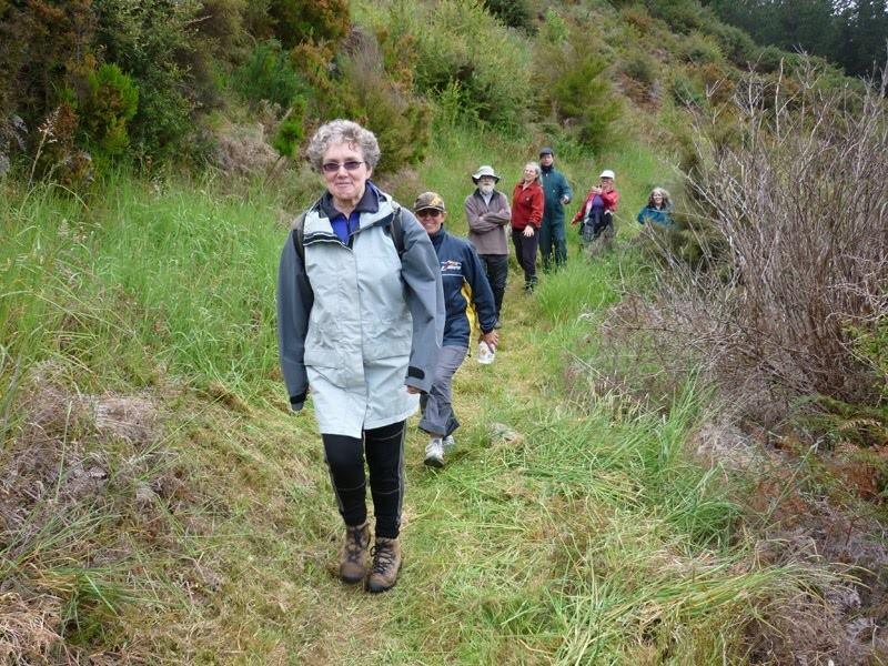 Beth-leads-walkers-on-Old-Rameka-731508