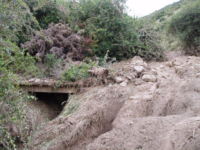 Great Expectations bridge swamped with debris but still standing